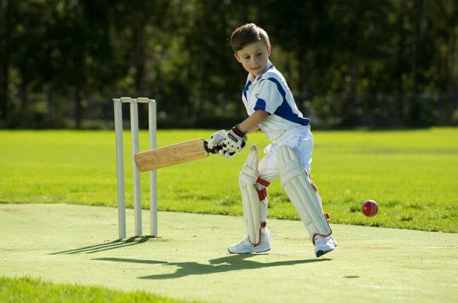 Cricket for website